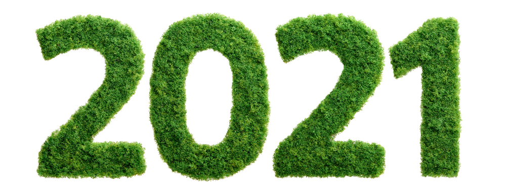 A Strong 2021 Trend of Doing Good for the Environment and the Business